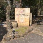 ザ・ヒルトップテラス奈良 平成最後の桜スイーツブッフェ 2019年4月7日訪問(ケーキバイキング関西 奈良 近鉄奈良)