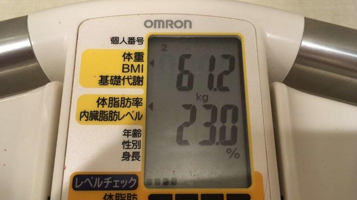 2019/7/16〜2019/7/31 体重経過と運動の記録 詳細